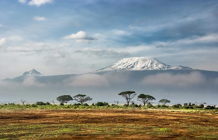 Kilimanjaro snow peak skyline