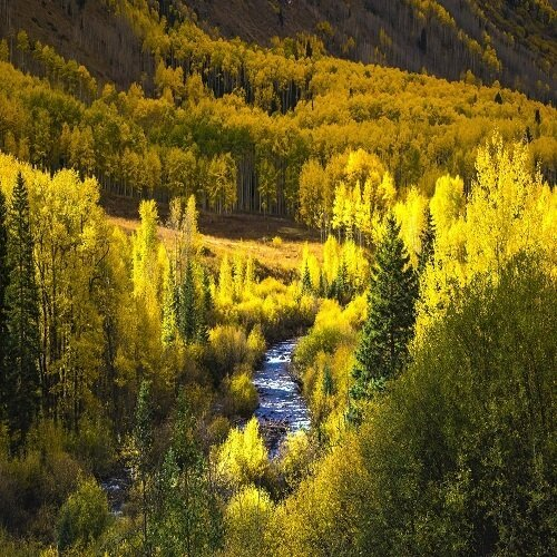 Aspen | Bucket List Group Travel