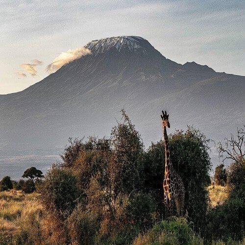 Kilimanjaro | Bucket List Group Travel