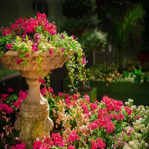 Queen-Elizabeth-II-Botanic-Park | Bucket List Group Travel