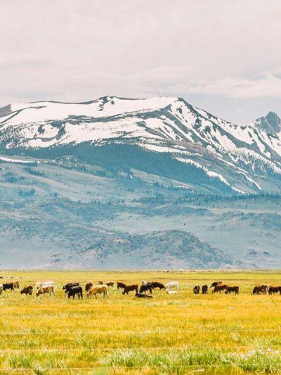 north america | Bucket List Group Travel
