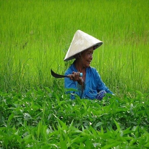 Battambang | Bucket List Group Travel