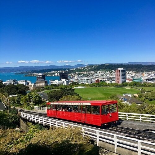 wellington | Bucket List Group Travel