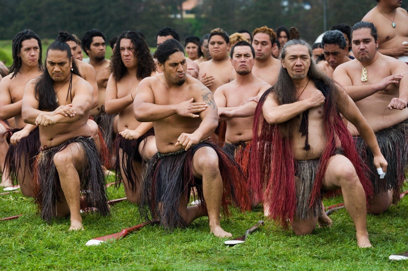 Maori—unveil an ancient culture