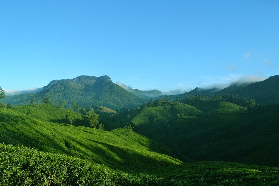 Best Places to visits in Munnar for solo travelers