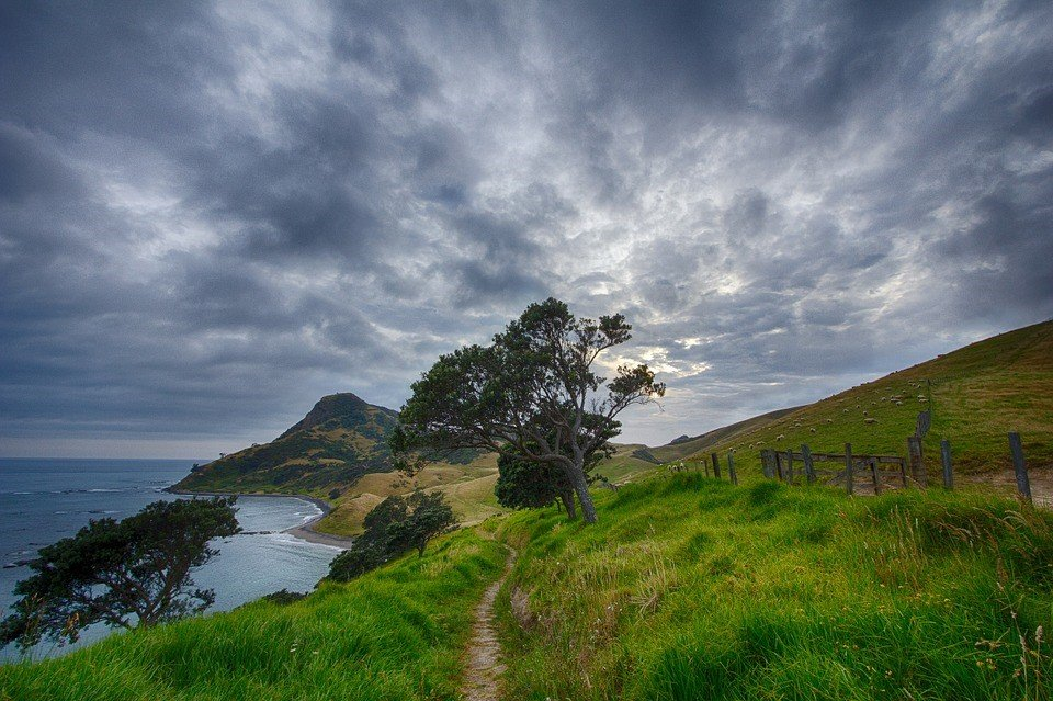 New Zealand Tour | Bucket List Group Travel