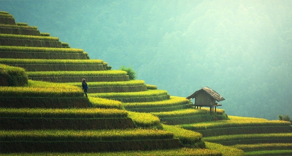 10 Reasons for Solo Travel to Asia